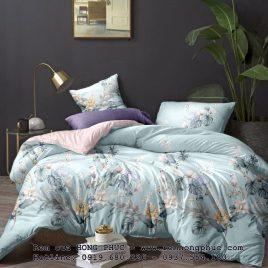 Chăn – ga – gối (drap giường) cotton tencel